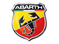 Radiateurbevestiging voor een abarth