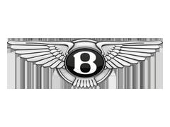 Auto onderdelen voor BENTLEY