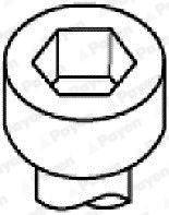PAYEN Cilinderkopbout (HBS044) PAYEN (HBS044)